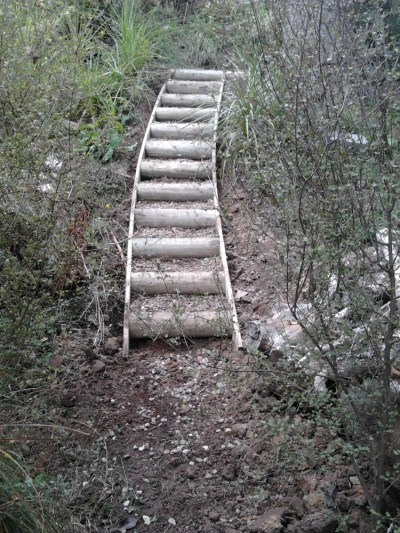 gully steps using half round timber