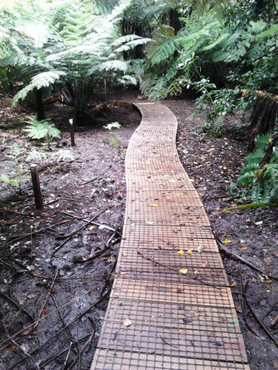a simple timber boardwalk along the gully floor