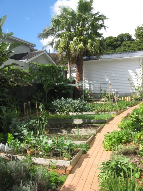 an edible garden courtyard